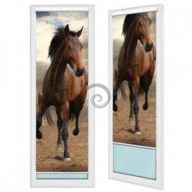 Fotoroleta - FR0031 - Kôň