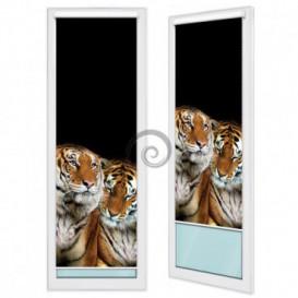 Fotoroleta - FR0056 - Tigre