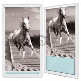 Fotoroleta - FR0076 - Kôň