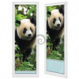 Fotoroleta - FR0085 - Panda