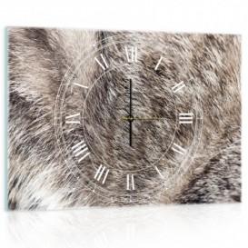 Nástenné hodiny - NH0296 - Srsť