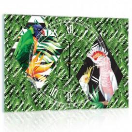 Nástenné hodiny - NH0333 - Papagáje