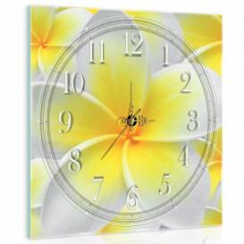 Nástěnné hodiny - NH0410 - Květiny