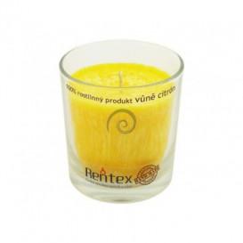 Palmová svíčka ve skle - citron