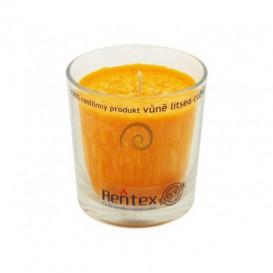 Palmová sviečka v skle - litsea cubeba