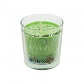 Palmová sviečka v skle – eukalyptus