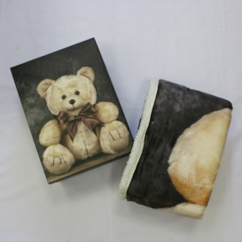 Deka 130x160 oteplená medveď Paľo