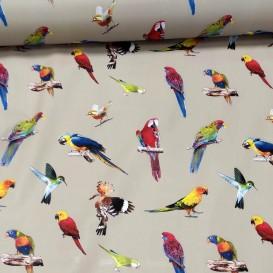 PVC obrus detský - papagáje 4842  š.140cm