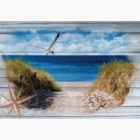Fototapeta - FT6010 - Chodník na pláž
