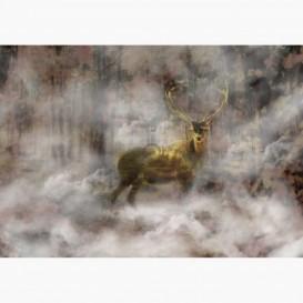 Fototapeta - FT6081 - Přízrak jelena