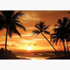 Fototapeta - FT6103 - Západ slnka medzi palmami