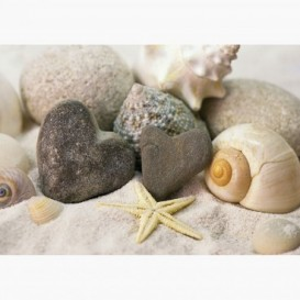 Fototapeta - FT6104 - Mušle a kamienky v piesku