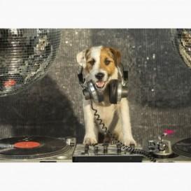 Fototapeta - FT6151 - DJ Parson russell