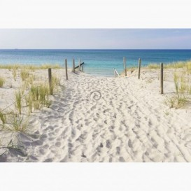 Fototapeta - FT6155 - Cesta na pláž