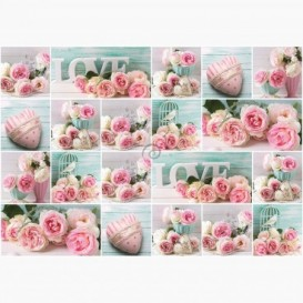 Fototapeta - FT6214 - Ružové ruže