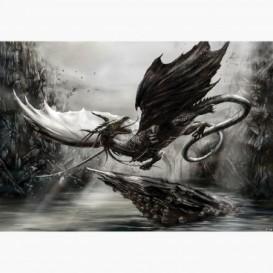Fototapeta - FT6412 - Fantasy drak