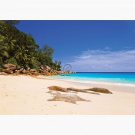 Fototapeta - FT6433 - Tropická pláž