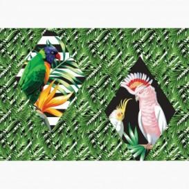 Fototapeta - FT6503 - Zelené listy - Papagáje