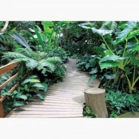 Fototapeta - FT6614 - Botanická záhrada