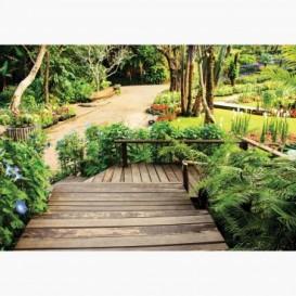 Fototapeta - FT6615 - Botanická záhrada
