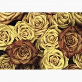 Fototapeta - FT7014 - Vintage ruže