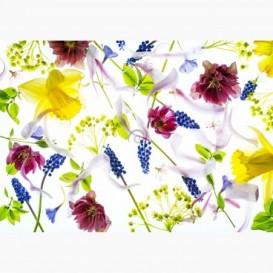 Fototapeta - FT7167 - Lúčne kvety