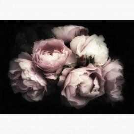Fototapeta - FT7252 - Kytica rúži
