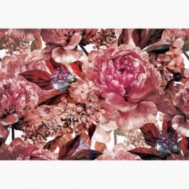 Fototapeta - FT7372 - Ružové maľované kvety