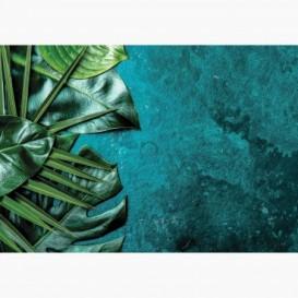 Fototapeta - FT7394 - Zelené listy na tyrkysovej textúre
