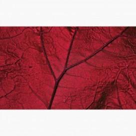 Fototapeta - FT7411 - Detail červený listu