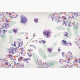 Fototapeta - FT7569 - Fialové lúčne kvety