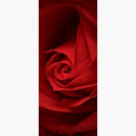Fototapeta - DV1048 - Červená ruža