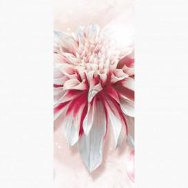 Fototapeta - DV1049 - Bielo-ružový kvet
