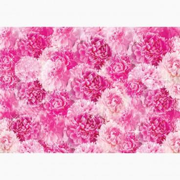 Růžové, fialové
